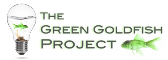 green-goldfish-project-with-bulb