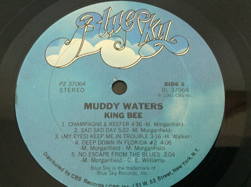 Muddy Waters KingBee